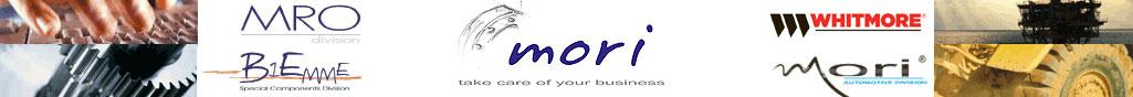 Mori - forniture articoli industriali, forniure meccaniche industriali, forniture elettriche industriali - Codogno (LO)